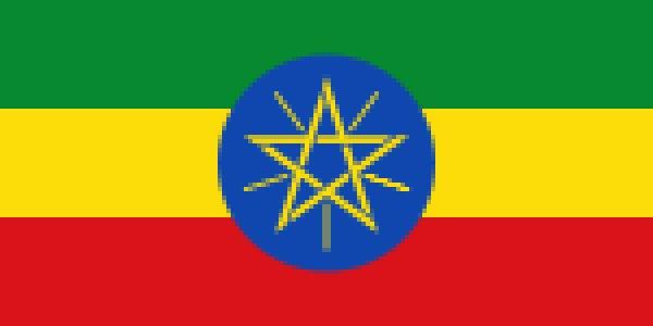 画像1: エチオピア<フルーティーなナチュラル製法> (1)